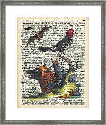 Animals Zoology Old Illustration Over A Old Dictionary Page Framed Print by Jacob Kuch