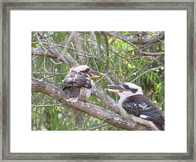 Animated Discussion Framed Print by Derek Donoghue