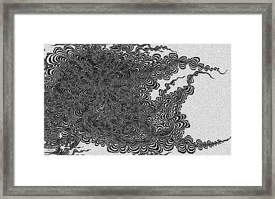 Anise Flower Framed Print by Douglas Christian Larsen
