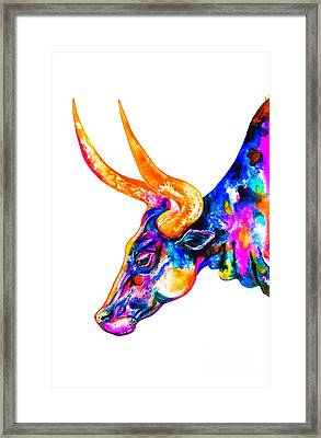 Ankole Longhorn Framed Print by Zaira Dzhaubaeva