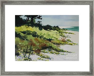Anna Marie Island Framed Print by Elizabeth Carr