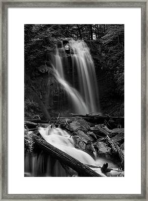 Anna Ruby Falls In Black And White Framed Print