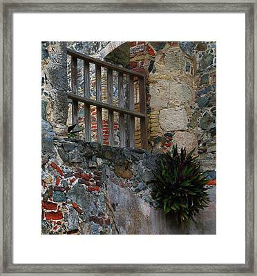 Framed Print featuring the photograph Annaberg Ruin Brickwork At U.s. Virgin Islands National Park by Jetson Nguyen