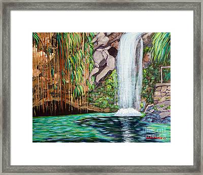 Annandale Waterfall Framed Print