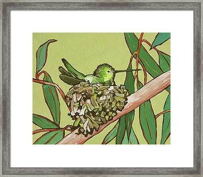 Annas Hummer Framed Print by Sandy Tracey