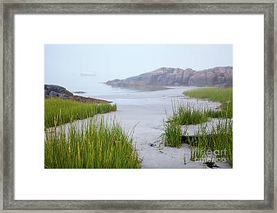 Annisquam  Fog Framed Print by Susan Cole Kelly