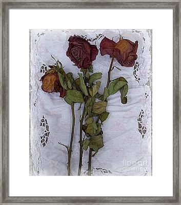 Framed Print featuring the digital art Anniversary Roses by Alexis Rotella