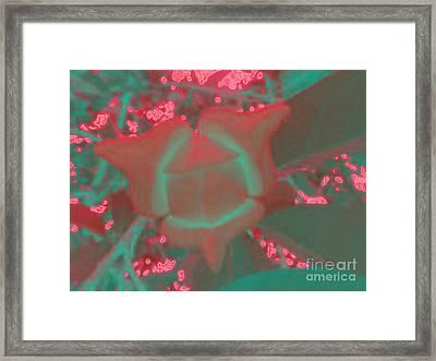 Annona's Flower Framed Print