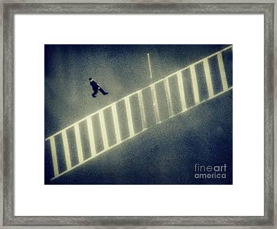 Anonymity Framed Print by Dana DiPasquale