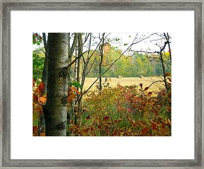 Another Bale Out Framed Print