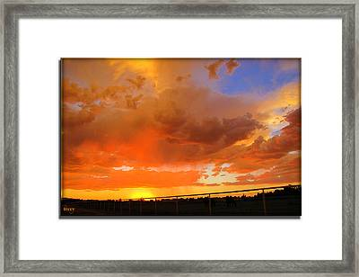 Another Creation For Our Enjoyment Framed Print