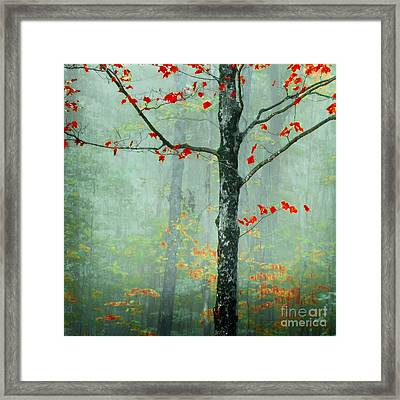 Another Day Another Fairytale Framed Print by Katya Horner