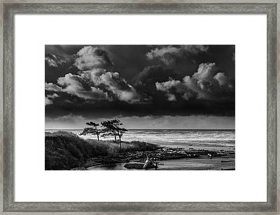 Framed Print featuring the photograph Another Day At Kalaloch Beach by Dan Mihai