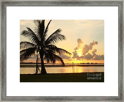 Another Day In Paridise Framed Print by Robyn Leakey
