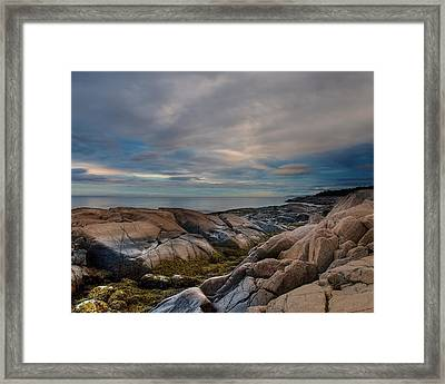 Another Day On Earth Framed Print by Irene Suchocki