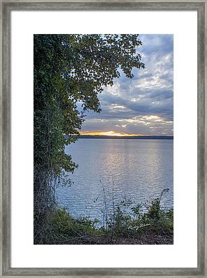 Another Day Framed Print by Ricky Dean