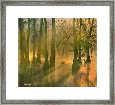 Another Day Framed Print by Tim Fitzharris