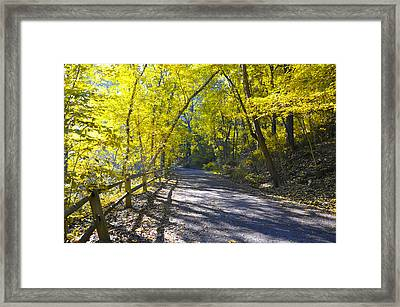 Another Fall In Philadelphia Framed Print by Bill Cannon