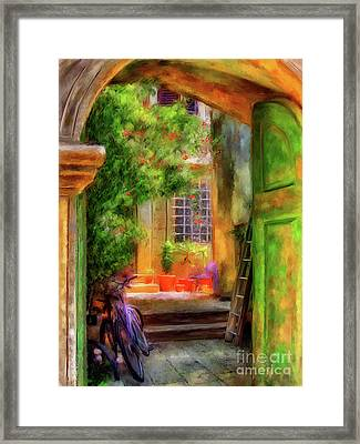 Another Glimpse Framed Print by Lois Bryan