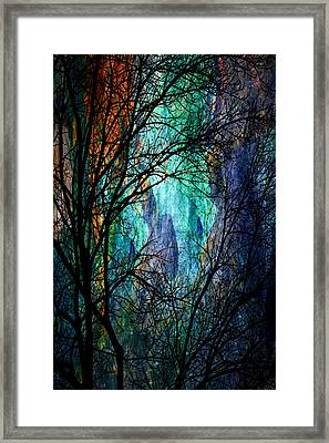 Another Night In The Canyon Framed Print