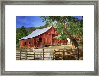 Another Season Begins Framed Print by Donna Kennedy