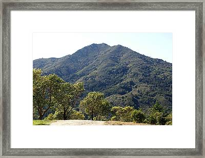Another Side Of Tam 2 Framed Print