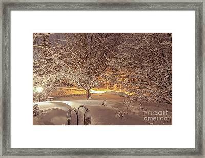 Another Snow Storm 1 Framed Print