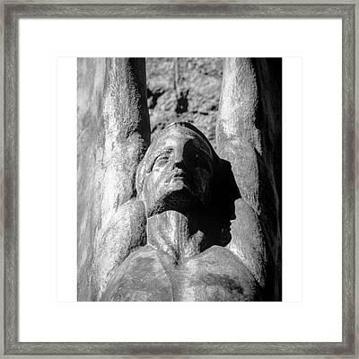 Another #wingedfiguresoftherepublic Framed Print