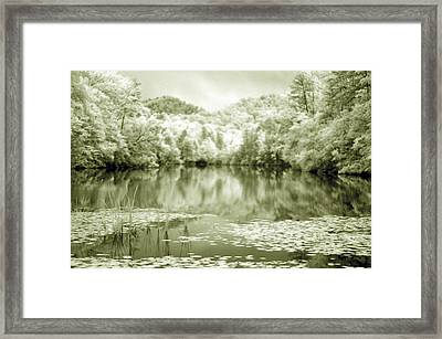 Framed Print featuring the photograph Another World by Alex Grichenko