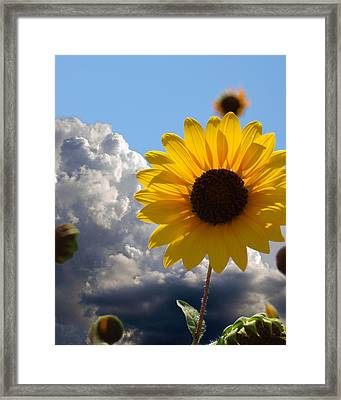 Answer Coming Framed Print by James Granberry