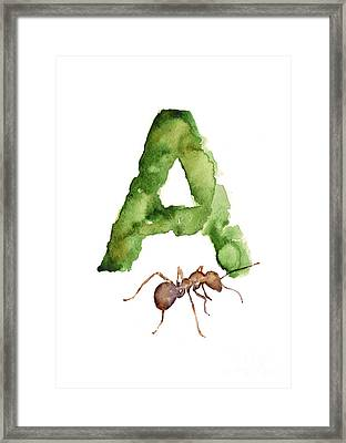 Ant Watercolor Alphabet Painting Framed Print