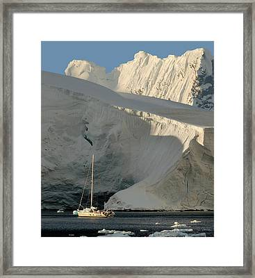 Antarctic No. 7 Framed Print by Joe Bonita