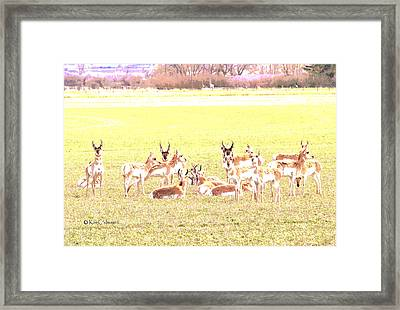 Framed Print featuring the digital art Antelope As Painting by Kae Cheatham