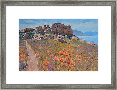 Antelope Island Outcrop Framed Print