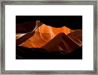 Antelope No 2 Framed Print by Adam Romanowicz