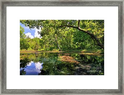 Antelope Springs I Framed Print