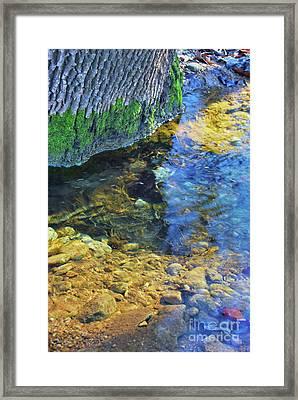 Antelope Springs Vii Framed Print by Ron Cline