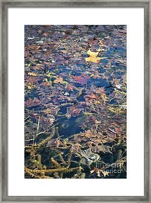 Antelope Springs Viii Framed Print by Ron Cline