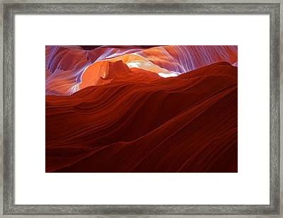 Framed Print featuring the photograph Antelope View by Jonathan Davison