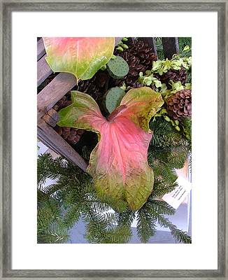 Antherium Giant Framed Print by Mindy Newman