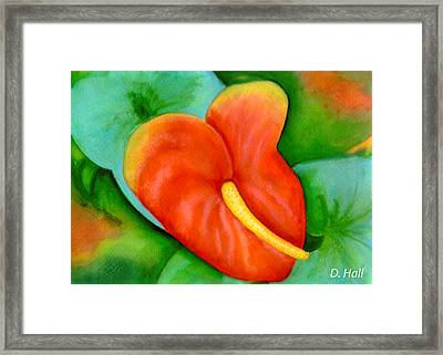 Anthurium Flowers #228 Framed Print by Donald k Hall