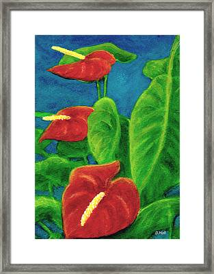 Anthurium Flowers #296 Framed Print by Donald k Hall