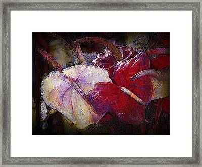 Framed Print featuring the photograph Anthuriums For My Valentine by Lori Seaman
