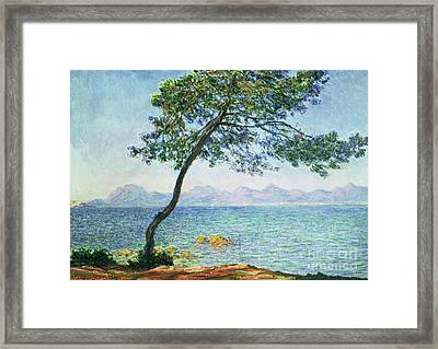 Antibes Framed Print by Claude Monet