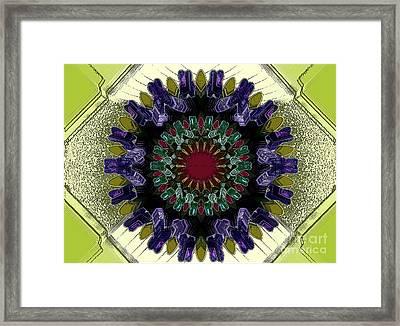 Antibody Framed Print by Patrick Guidato