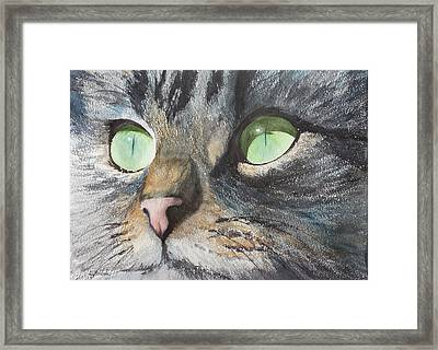 Anticipation Framed Print by Ally Benbrook