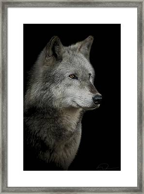 Anticipation Framed Print by Paul Neville