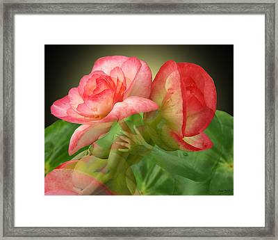 Anticipation Framed Print by Torie Tiffany