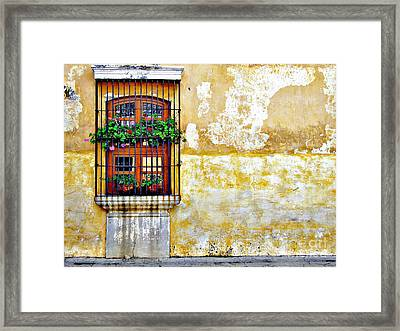 Antigua Window Framed Print