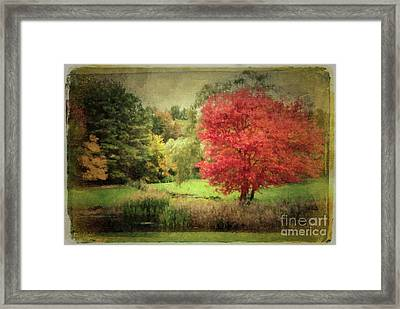 Antique Autumn Framed Print